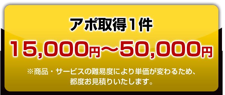 アポ取得1件15,000円~50,000円
